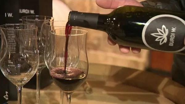 Вино из конопли: сделано в Бордо