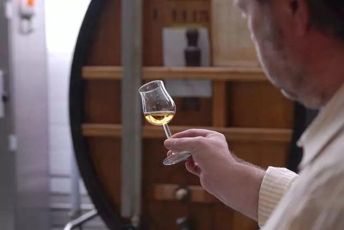 Влияние алкоголя на организм. Как пить без вреда для здоровья