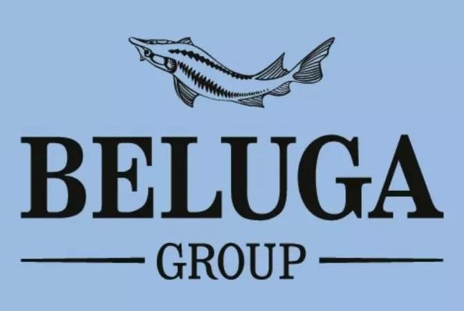 BelugaGroupпредставит в России три новых французских винных бренда