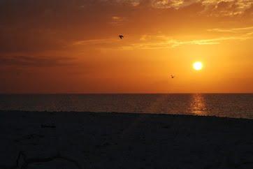 Sunset Wilson Island