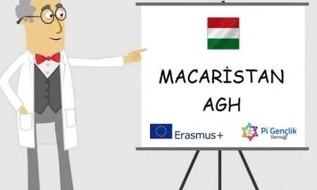 macaristan-evs