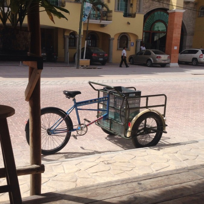 cargo bike delivery