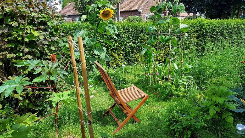 pergola pour jardin