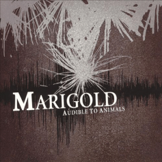 TBM004 Marigold – Audible to Animals CD, 2005