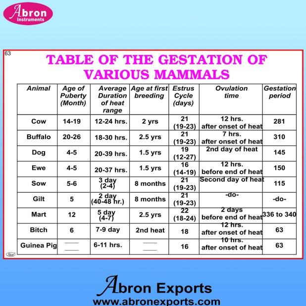 cattle gestation period table | Brokeasshome.com