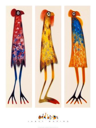 funky-odd-bird-trio-posters.jpg
