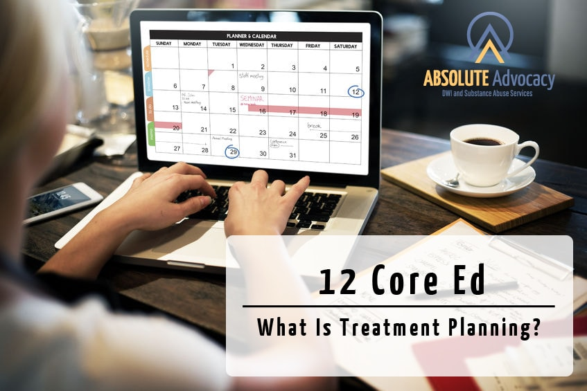 12 Core Functions What Is Treatment Planning Absolute Advocacy