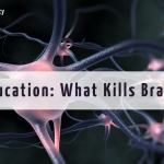 Drug Education: What Kills Brain Cells?