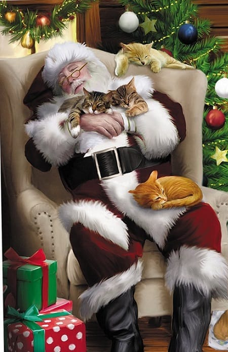 10 Cute And Funny Cat Christmas Cards Absolute Christmas
