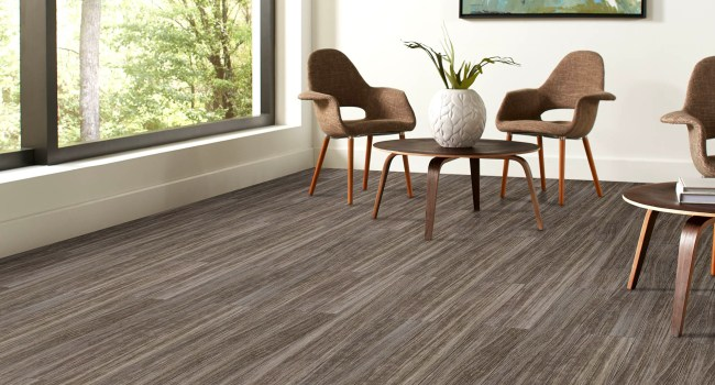 2019 Absolute Property Solutions Services - Flooring 001
