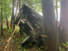 Vehicle crash into the trees Paratech Strut (3)
