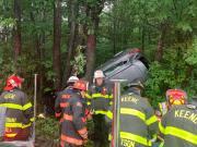 Vehicle crash into the trees Paratech Strut (6)