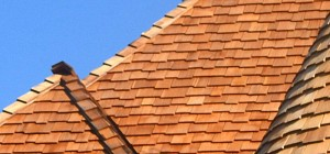 vancouver-roofing-contractor