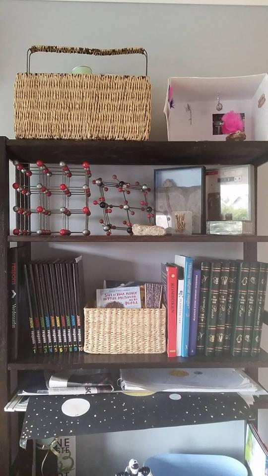 Her er litt av skolehyllene våre. På toppen er noe hobbyting, så er det naturfaghylla, og så er det hylle med leksikon og andre interessante bøker og en kurv med biblioteksbøker. Rett under der er prosjekthylla. Der ligger prosjekter som barna holder på med.