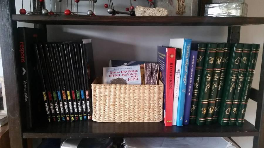Leksikon, verdensatlas, dyreatlas, biblioteksbøker (i kurven) og andre fine bøker.