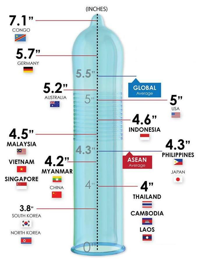 misura massima del pene