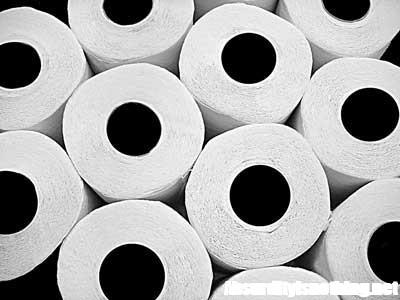 Ruba 500 rotoli di carta igienica