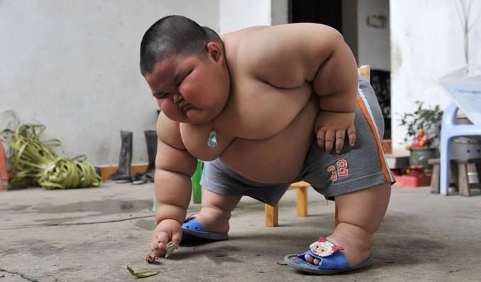 Lu Hao, il bambino Cinese più grasso - A 3 anni pesa 57 chili