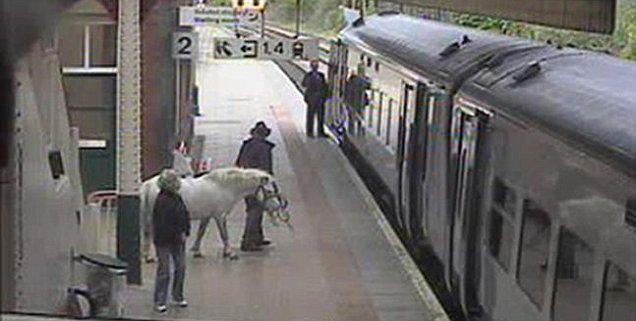 Sul treno col pony