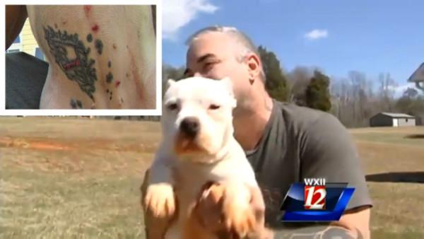 Fa un tatuaggio al proprio cane (2)
