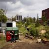 Converte un bidone dei rifiuti in una casa (1)