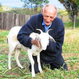 74enne brasiliano sposerà la sua capra nella Chiesa del Diavolo