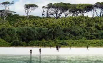 North Sentinel, l'isola che è anche il posto più difficile da visitare (3)