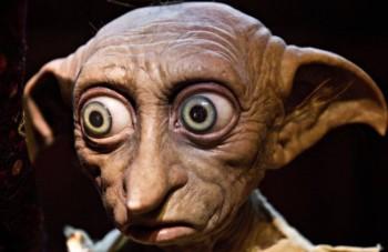 Dopo la chirurgia plastica assomiglia a Dobby di Harry Potter (3)