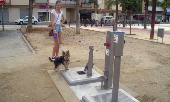 Bagni pubblici per cani in un paesino spagnolo u2013 absurdity is nothing