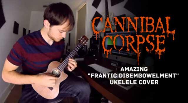 Come sarebbe il death metal suonato con l'ukulele? (VIDEO) (2)