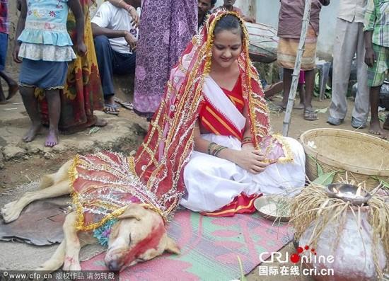 Ragazza indiana si sposa con un cane