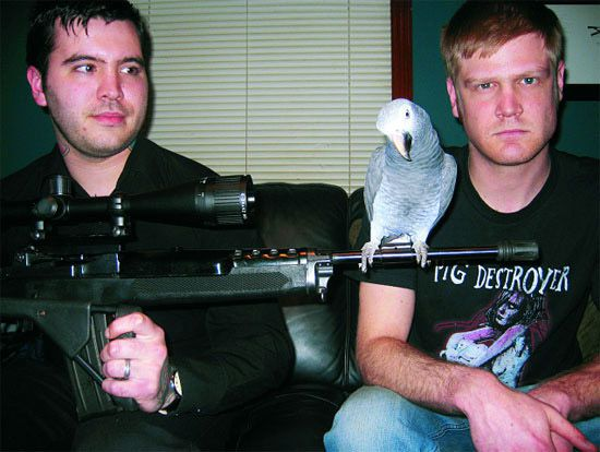 Gli Hatebeak - la band death metal con il frontman pappagallo