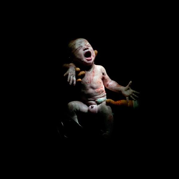 Christian Berthelot cattura i primi attimi di vita dei neonati (5)
