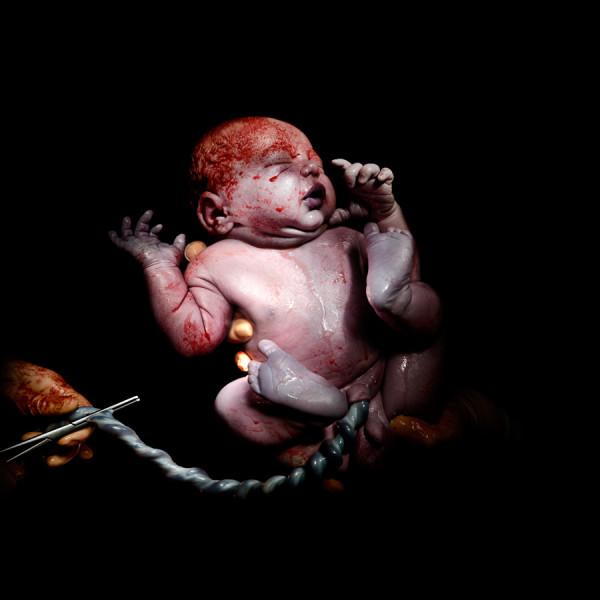 Christian Berthelot cattura i primi attimi di vita dei neonati (2)
