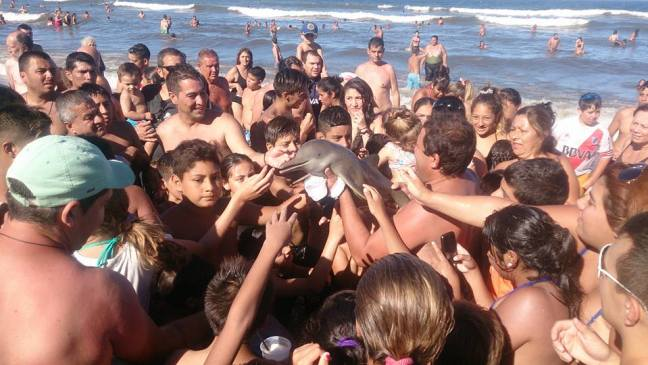 delfino-selfie