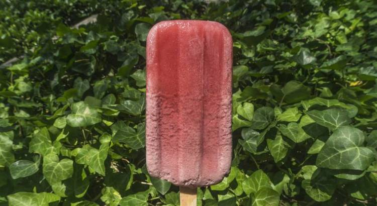 Ristorante di New York inventa il ghiacciolo al brodo di ossa