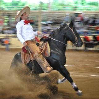Gare di scivolate con i cavalli, la nuova pazza moda messicana