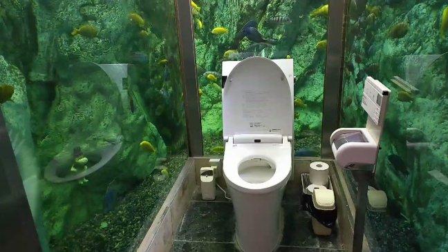 bagno-acquario-giappone