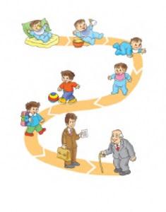 İnsanın büyüme evresi absurdizi.com