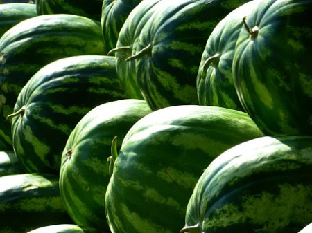 How To Start Lucrative Watermelon Farming Business In Africa