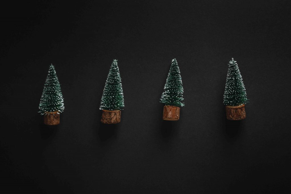 christmas-trees-on-dark-background-QW7JAAU-1024×683
