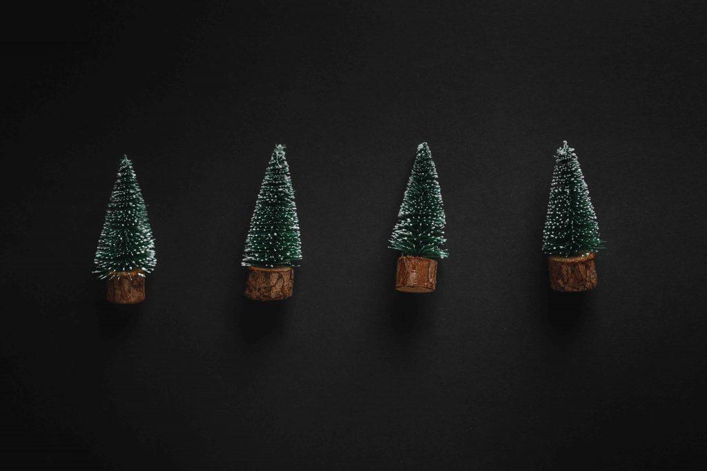 christmas-trees-on-dark-background-QW7JAAU-1024×683