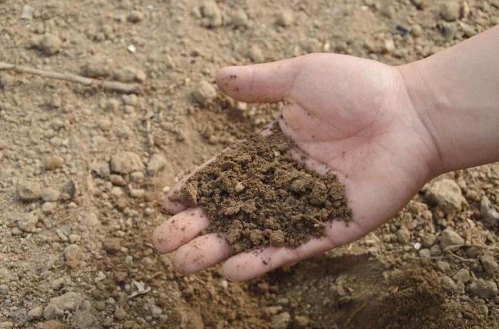 Kandungan Mikro Tanah