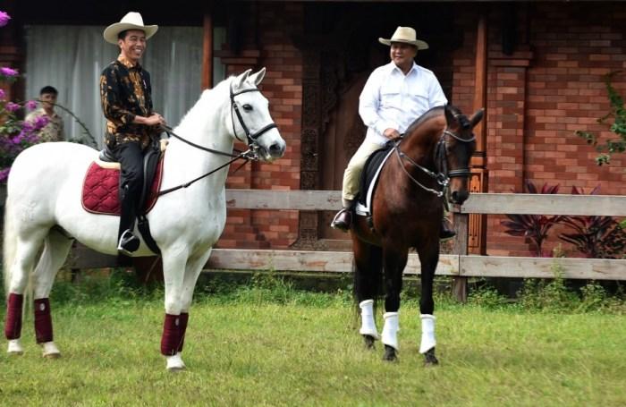 Alat transportasi kuda