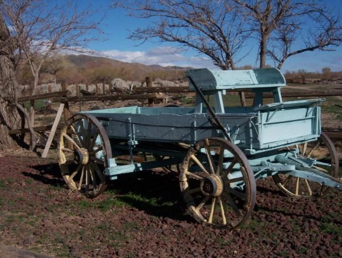 Lori Wagon