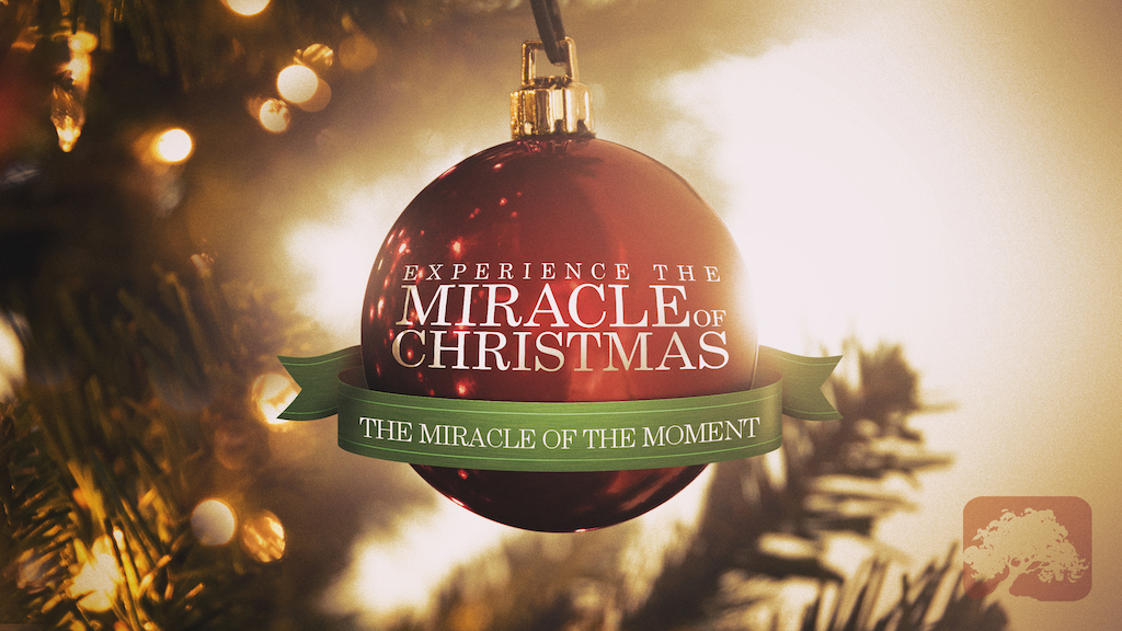 The Miracle Of Christmas.The Miracle Of The Moment The Miracle Of Christmas