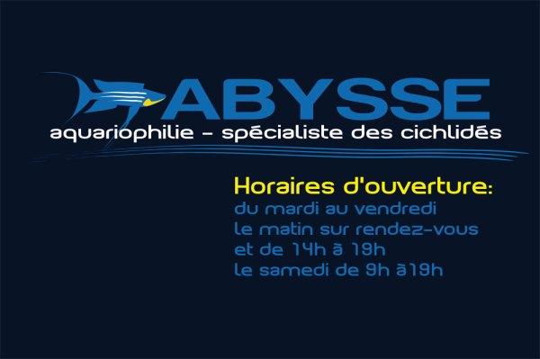 Horaires du magasin Abysse