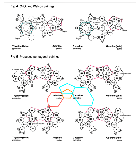 DNA-GEOMETRY-2
