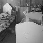 Pai mata filho de 5 anos com facada no pescoço em Rio Branco
