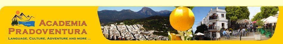 cabecera de la web de Academia Pradoventura en 2008